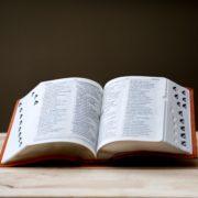 Diccionari llengua